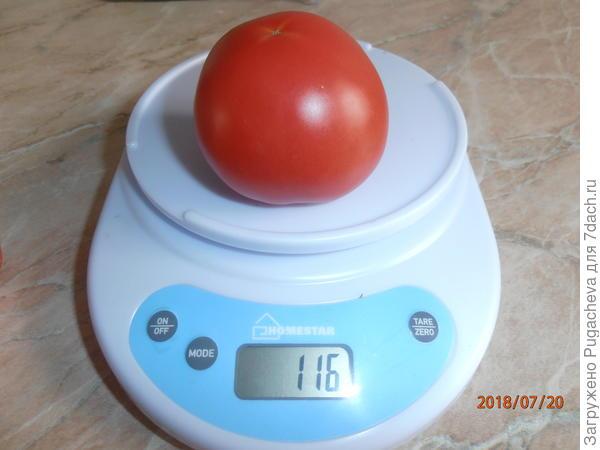 вес 116 гр.