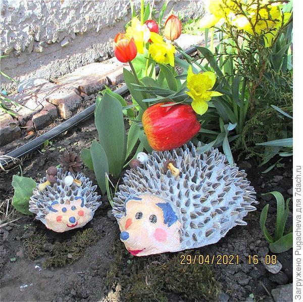Ёжики в весенних цветах.