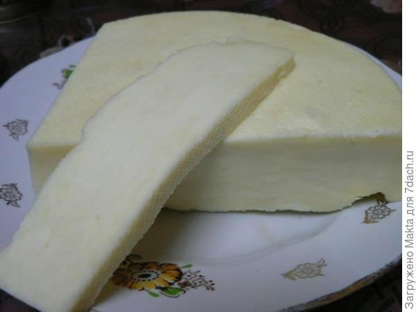Один из сыров