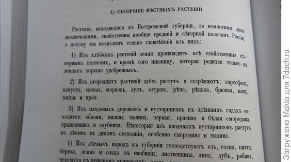 Об огородничестве в Костромской губернии