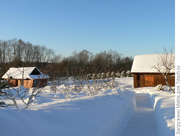 Дорожки зимой