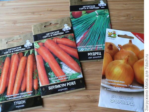 Морковь, лук