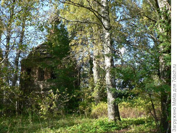 Введенская церковь села Ряполова