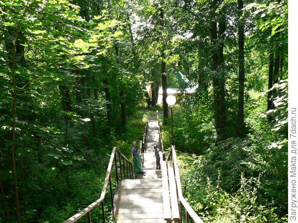 Та же лестница летом