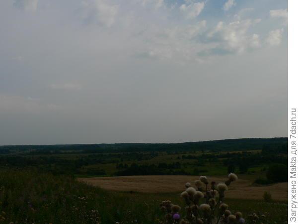 Вид с холма на Судиславскую землю
