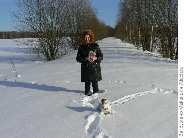 Дорога занесена снегом.