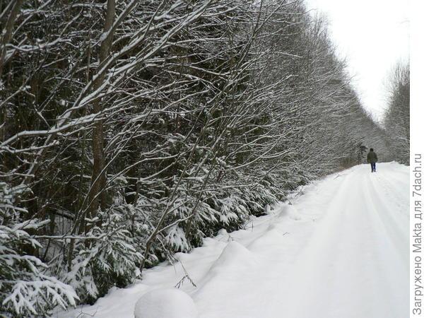 Дорога для прогулки