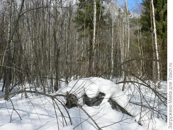Редкие снежные фигуры