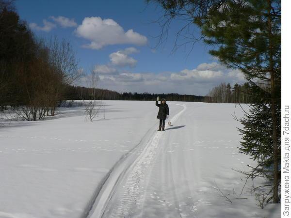 По следу снегохода