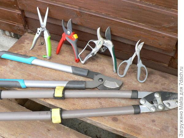 Инструмент для обрезки на выбор