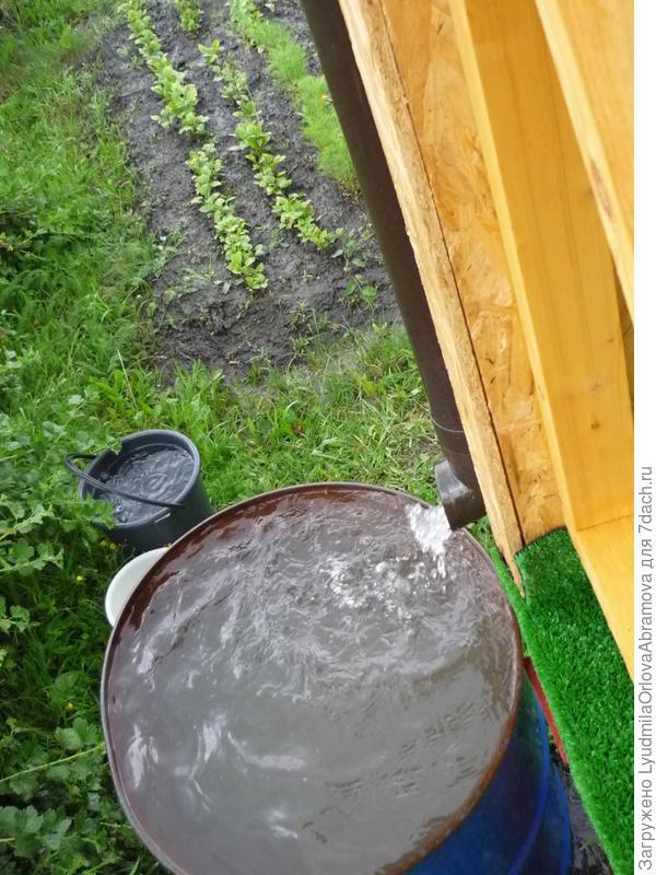 Бочка под дождевую воду