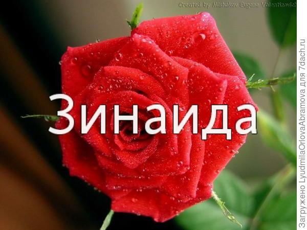 Зинаида Евгеньевна, Ваши работы я узнаю, еще не прочитав надпись к ним!!!