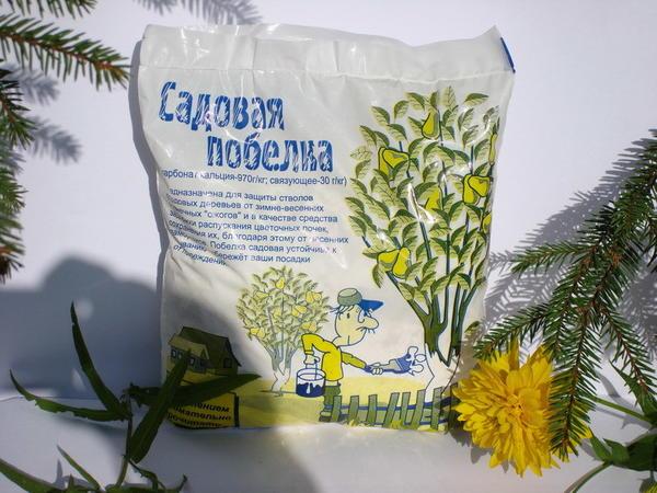 Побелка садовая. Фото с сайта http://landscape-project.ru