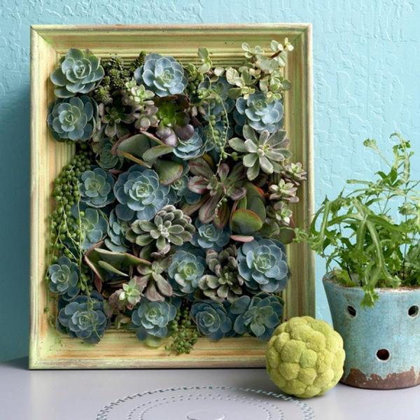 Настенное панно из суккулентов. Фото с сайта http://www.krusto.ru/