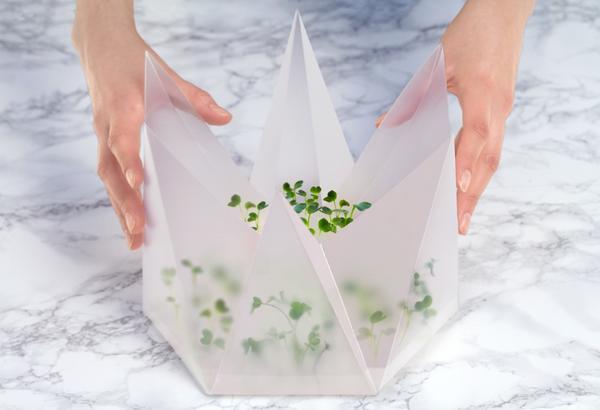 Infarm: парник для микрозелени, не требующий ухода. Фото с сайта https://www.indiegogo.com/