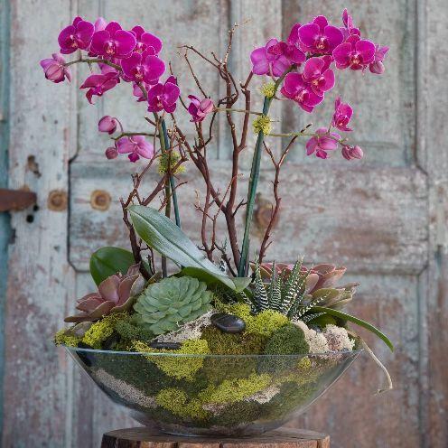 Композиция с фаленопсисом. Фото с сайта http://bajaflower.com