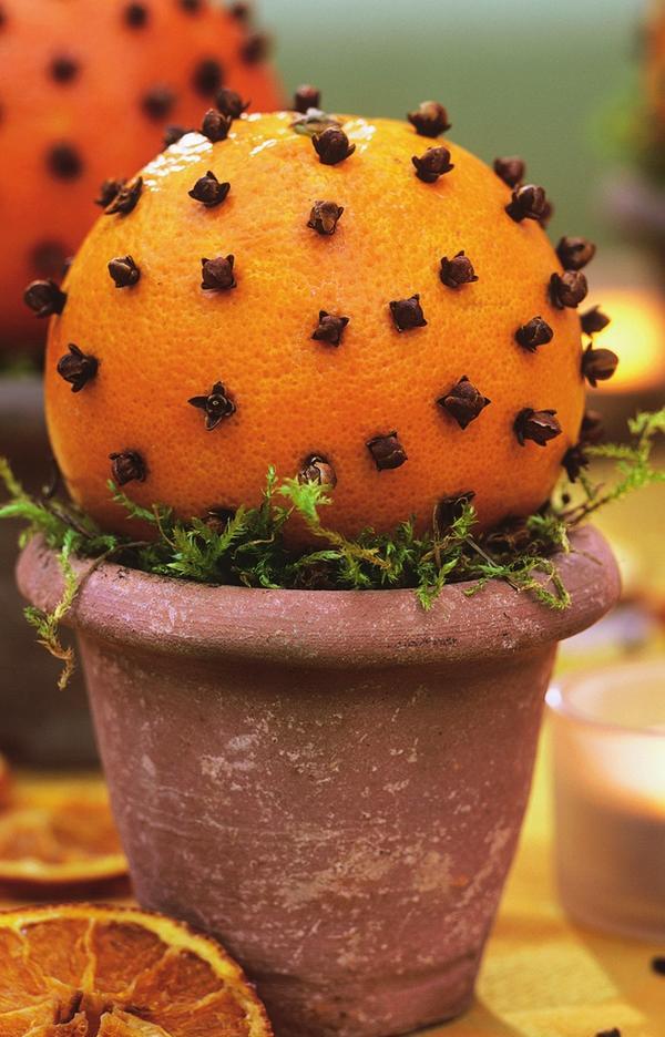Апельсиновое деревце