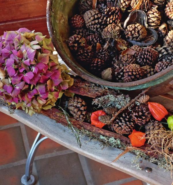 Благородные ароматы против хандры