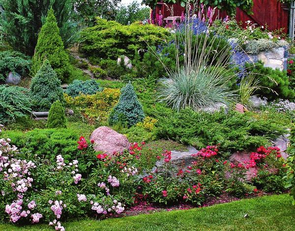 Садовые фантазии