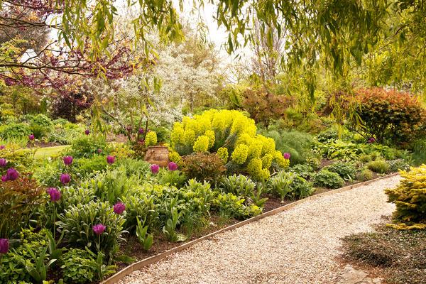 Гравийная дорожка в саду
