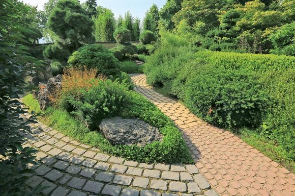 Даже работу по обрезке можно свести к минимуму, если за основу садового дизайна вы взяли компактные, небольшие культивары.