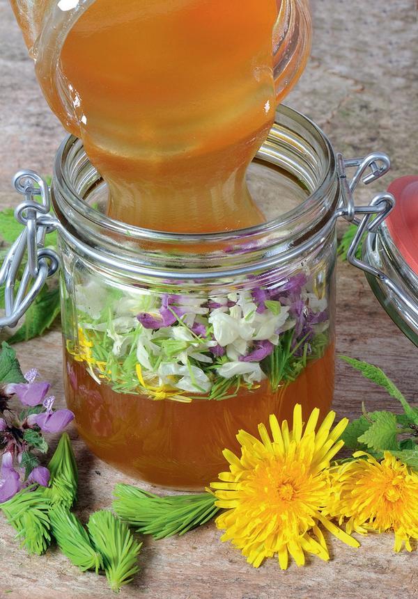 Весенний мед из одуванчиков