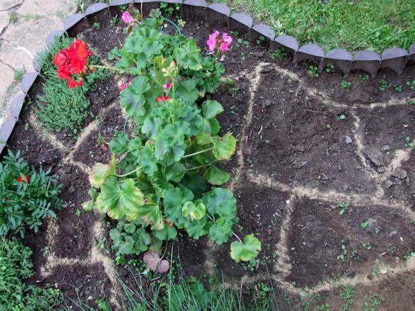 Сегменты для посадки цветов рисуем струйкой песка