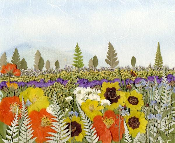 Картина из засушенных растений. Фото: www.pressed-flowers.com