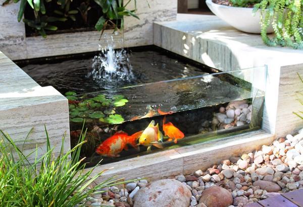 Садовый аквариум. Фото с сайта http://homesthetics.net