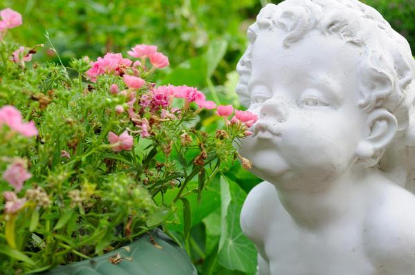 Элементы декора перетягивают на себя внимание, отвлекая от скромных размеров сада.