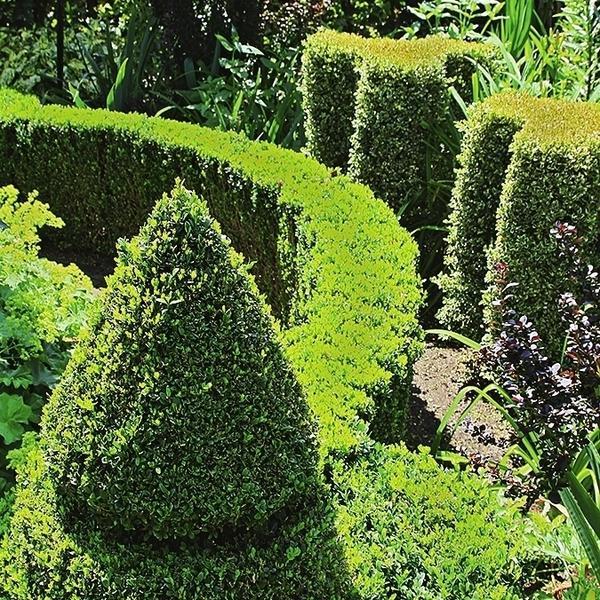 Элементы с такими очертаниями в саду всегда выглядят эффектно и гармонично.