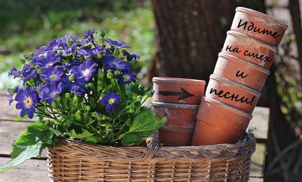 Башня из глиняных горшков, на ободках которых написано сообщение, дает ясный ориентир для гостей.