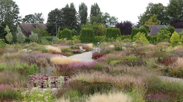 Нужно полностью задействовать все архитектурные возможности растений. Фото с сайта oudolf.com