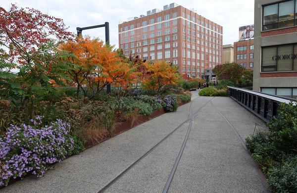 High Line. Фото с сайта oudolf.com