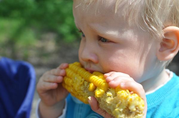 Сорта для людей отличаются более нежными зернами