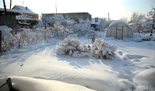 Февраль зиму замыкает, весне дорожку показывает