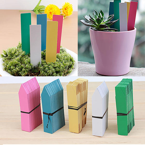 Разноцветные этикетки для рассады. Фото с сайта ebay.com