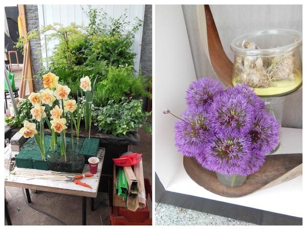 Слева: вот так примерно делаются постановочные фотографии для каталогов и интернет-магазинов в Голландии. Справа: композиция из декоративных луков.