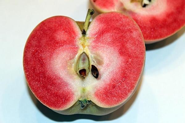 Розовый жемчуг. Фото с сайта farmpirate.com