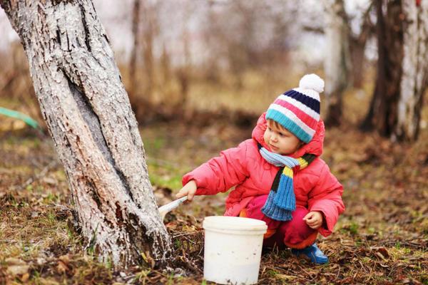 Защитники плодовых деревьев