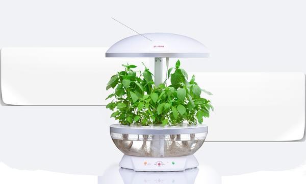 PlantMe. Фото с сайта adhocfactory.com