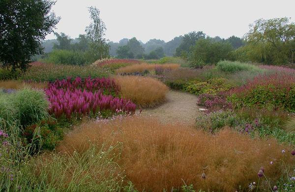 Один из садов Пита Удольфа. Фото с сайта oudolf.com