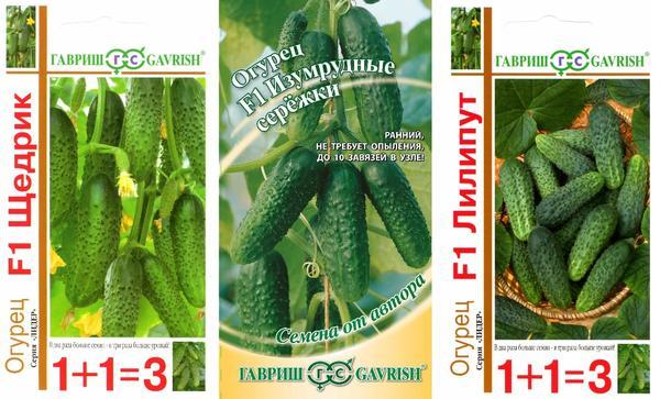 Семена огурцов от компании Гавриш