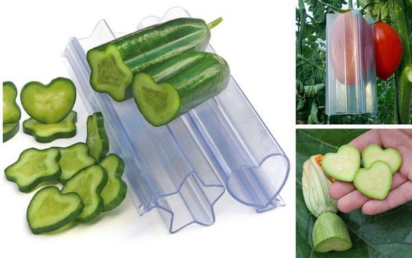 Забавные формы для овощей. Фото с сайта burpee.com