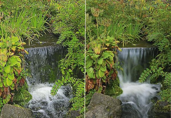 При съемке текущей воды или растений, качающихся на ветру, работа с выдержкой особенно важна
