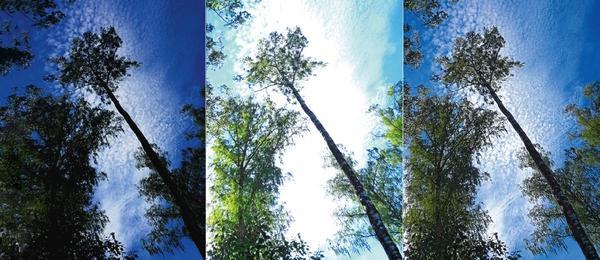 Проблемы с правильной экспозицией кадра часто возникают у начинающих фотографов. В итоге снимки получаются недосвеченными (крайнее фото слева) или пересвеченными (фото в центре)