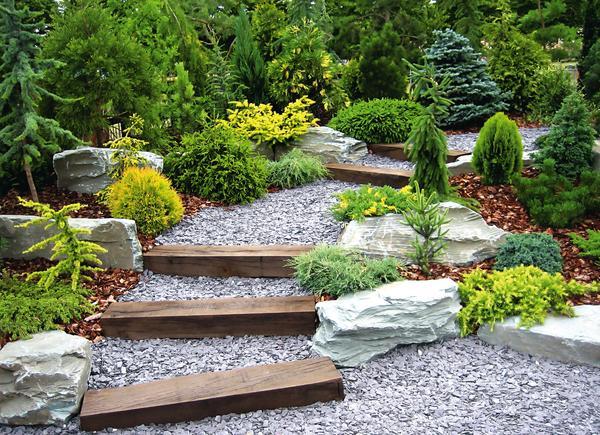 Рядом со ступенями органичнее смотрятся небольшие растения с плоскими и круглыми кронами — они повторяют пологий «силуэт» лестницы