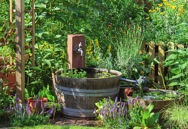 Старые деревянные бадьи превратились в прелестный водный ансамбль для рустикального сада. На фото две емкости соединяет желоб, по которому течет вода. Ее приводит в движение искусно задрапированный насос