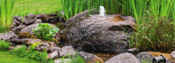 Вода весело журчит, стекая по камню-фонтану. Ее приводит в движение насос, который, как и резервуар, надежно спрятан под камнями и растительностью