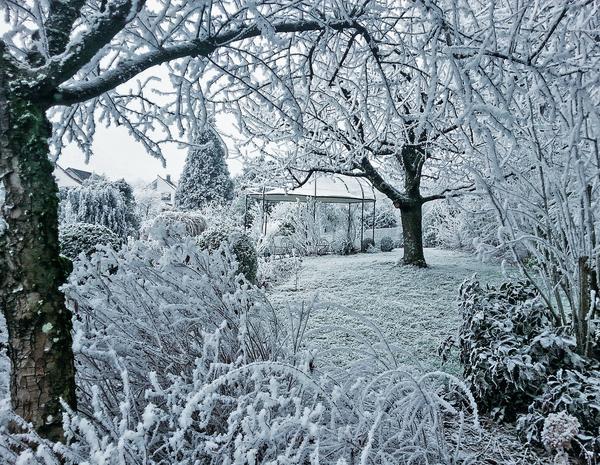 Присыпанная снегом беседка словно сказочный домик в зачарованном лесу
